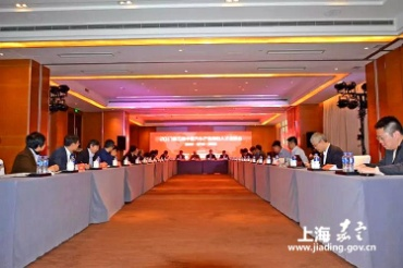 Overseas returning experts in auto industry gather in Anting